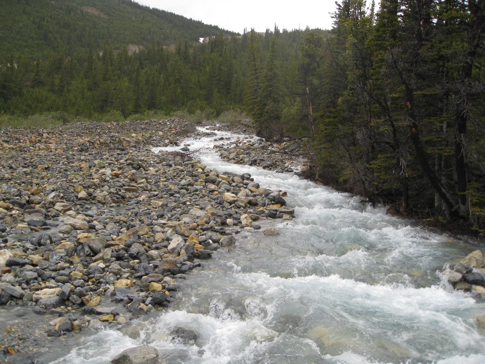 """Berg Lake Trail rapid""的图片搜索结果"